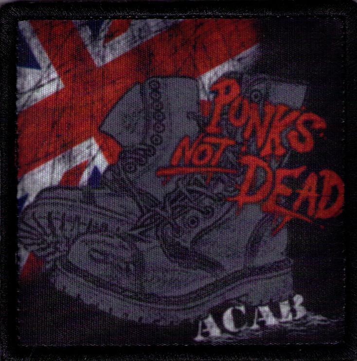 PUNKS NOT DEAD 05